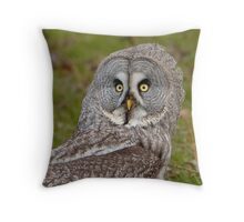 Great Grey Owl on the ground Throw Pillow