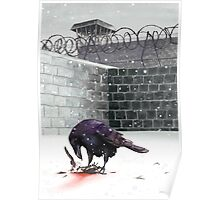 Crow, Bloody Snow Poster