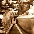 Old Tub by Jessie Miller/Lehto