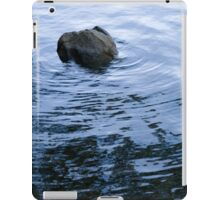 The Rock iPad Case/Skin