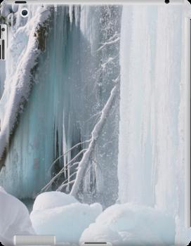 Winter Wonderland iPad Case by Wojciech Dabrowski