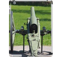field cannon iPad Case/Skin