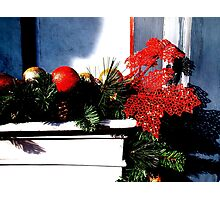 Deck the Halls Photographic Print