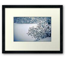 First Snowfall Framed Print