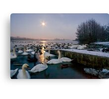 Frozen Whitlingham Canvas Print