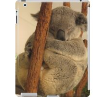 Australian Koala for iPad iPad Case/Skin