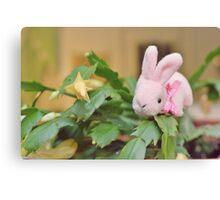 Bunny Collection #12 - bunny on a christmas cactus Canvas Print