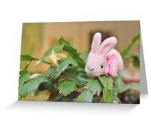 Bunny Collection #12 - bunny on a christmas cactus Greeting Card