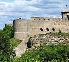 View of the Ivangorod Fortress by mrivserg