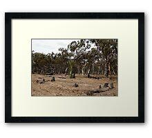 untitled #114 Framed Print
