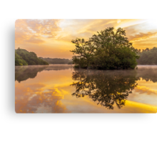 Sunrise in Epping Forest Canvas Print