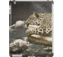 Lazing on a Sunday Afternoon iPad Case/Skin