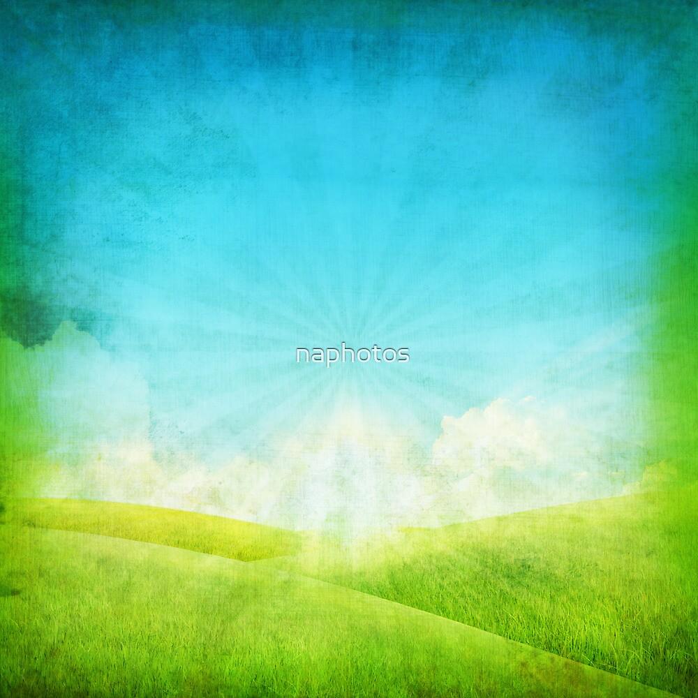 grassland and blue sky by naphotos