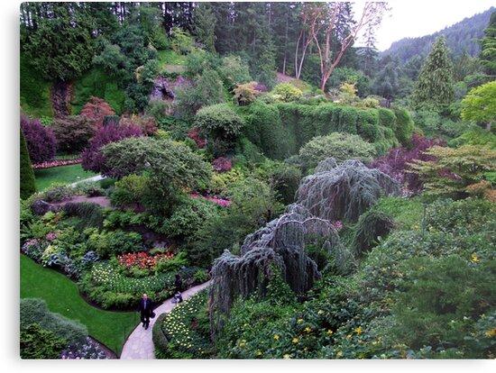 The Sunken Garden by George Cousins