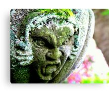 Sculpted Anger Canvas Print