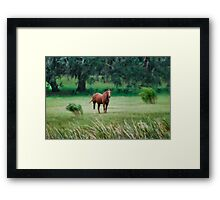 Whispering Winds Framed Print
