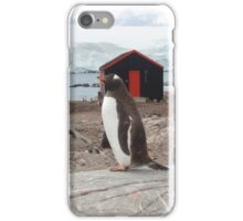 Penguin Post Office iPhone Case/Skin