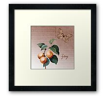 Inspired Joy Apricots Framed Print