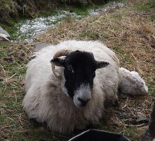 New Mum by gemmaeleanor