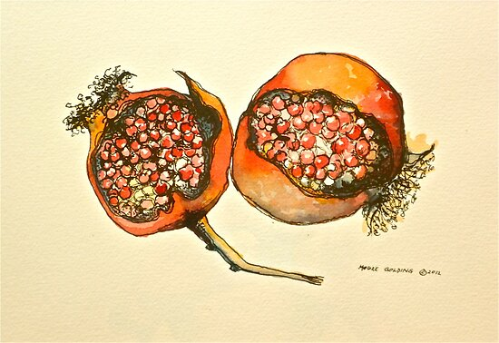 Pomegranate. Pen and wash 2012Ⓒ  by Elizabeth Moore Golding