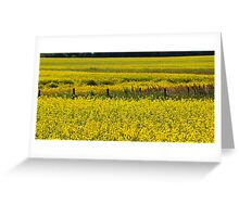 Canola Field and Fence Posts Greeting Card