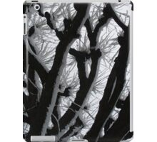 Snow on Branches iPad Case/Skin