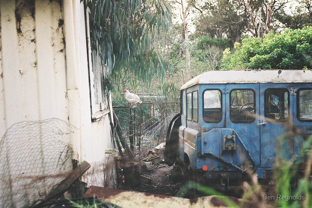 Chook VW - Car Series by Ben Reynolds