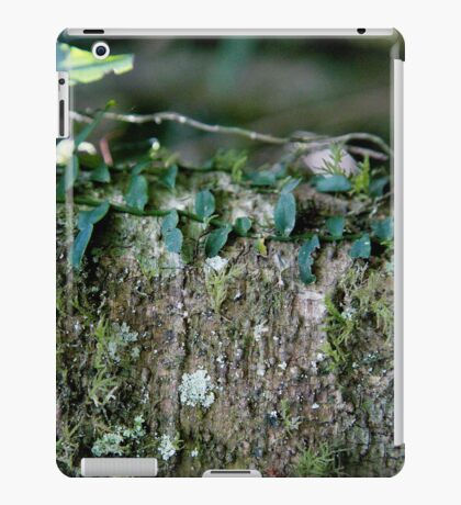 Rainforest Series #1 for iPad iPad Case/Skin
