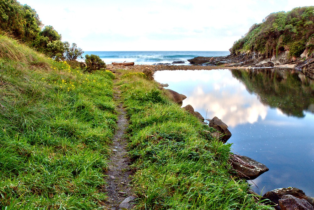 Follow the Path to the Sea by John Sharp