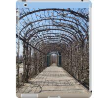 Hallway iPad Case/Skin