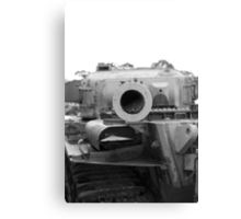 Staring down the barrel Canvas Print