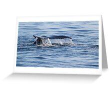 Diving... Greeting Card