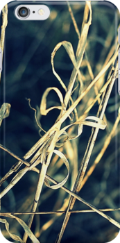 Reed Abstract by Kitsmumma