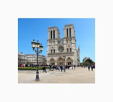 Stunning! Notre Dame France Women's Fitted V-Neck T-Shirt