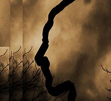 Silhouette of a Face by SHappe