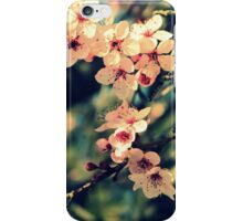 September Afternoon iPhone Case/Skin