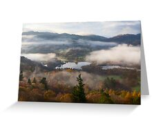 Misty Elterwater Greeting Card