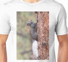 Kaibab Squirrel Unisex T-Shirt