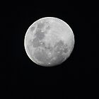 Full Moon by desley55