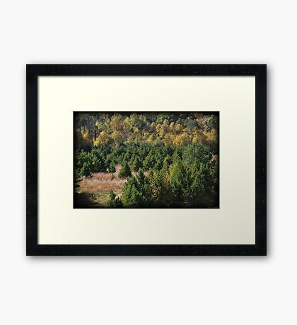 Color Waves Framed Print