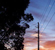 Dawn Three - 24 10 12 by Robert Phillips