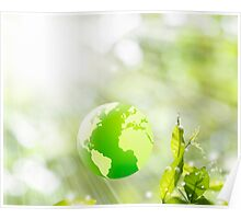 green globe Poster