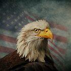Patriotism by swaby