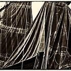 Sails, The Belle Angel  2012 by Frank Bibbins