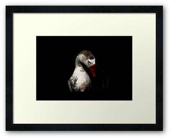 Moonlight Goose by Heather Friedman
