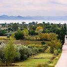 Lago Trasimeno from Sanguineto, Tuoro sul Trasimeno, Umbria, Italy by Andrew Jones