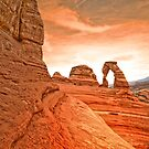 The Delicate Arch by Tara  Turner