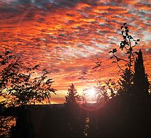 Sunset sky  by manuwiza