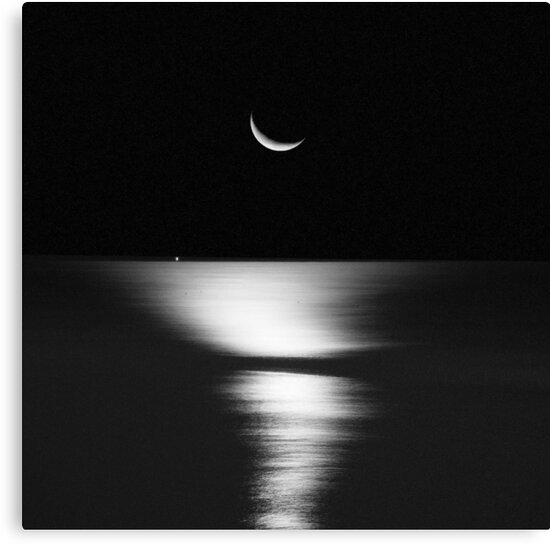 Moonrise Over Atlantic by Mary Ann Reilly