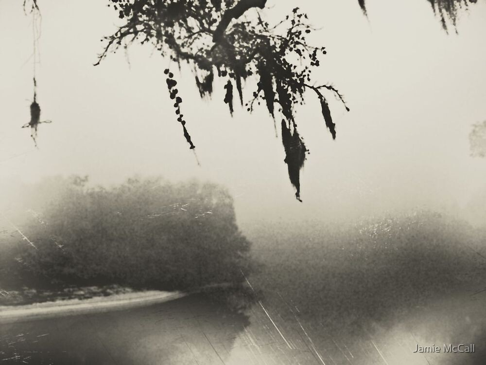 old fog by Jamie McCall